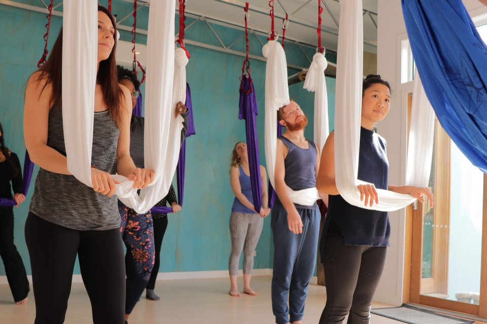 Hybrid Yoga Styles: Do they Enrich Yoga or Dilute It?